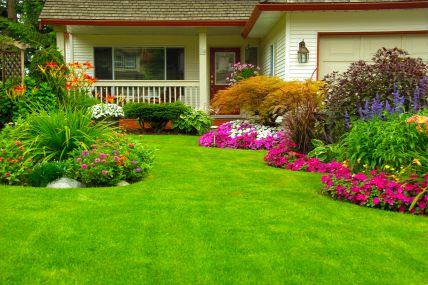 Une marre pour votre jardin des astuces de d coration bricolage et autres pour votre maison - Astuce bricolage jardin ...