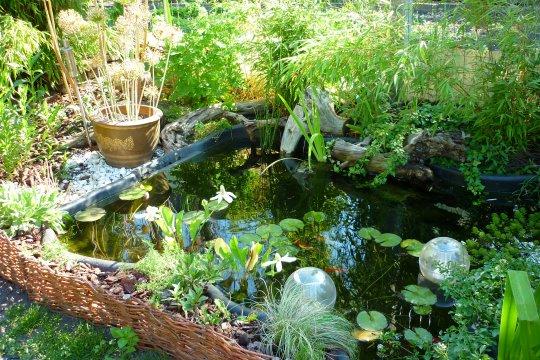 Une marre pour votre jardin des astuces de d coration for Marre de jardin